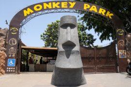 Entree Monkey Park