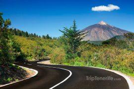 Teide Noord