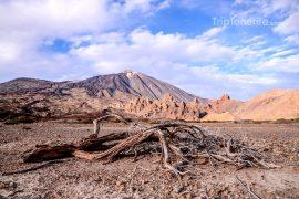 Ucanca woestijn