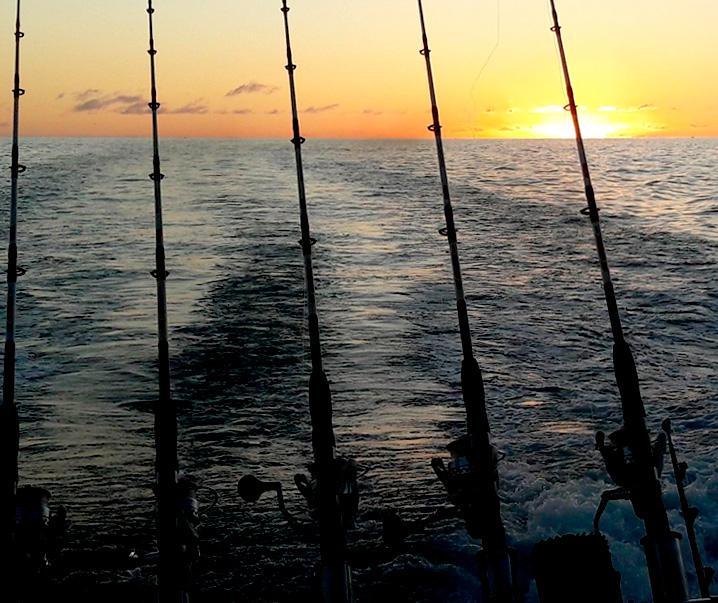 No Limit Vissen Tenerife